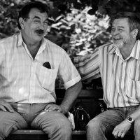 Сидели два товарища..... :: Владимир Салапонов