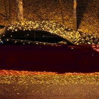 Осень :: Геннадий Герасимов