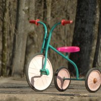 трицикл :: Михаил Жуковский