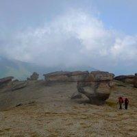 Каменные грибы или Столы богов на склонах Эльбруса. Высота 3000 м над уровнем моря. :: Vladimir 070549