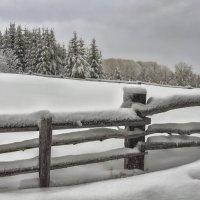 """""""  Снег да снег кругом...  """" :: Светлана Лиханова"""