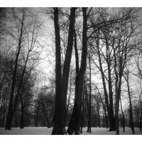 Парк Екатерингоф :: Юрий Тихонов