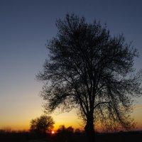 закат :: İsmail Arda arda