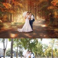 Осенняя сказка (До-после) :: Дарья Суркина