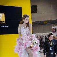 Кокетливая невеста :: Николай Ефремов