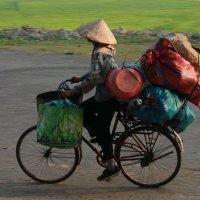 Вьетнам :: Елена