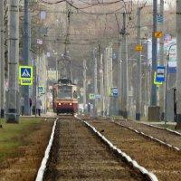 Вот такая колея, понимаешь... :: Владимир Гилясев