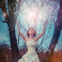 Весна :: Светлана Луресова