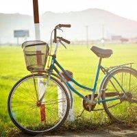 Bicycle :: Дмитрий Кийко
