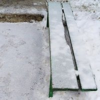 ~ Птичьи лапки на снегу ~ :: Ирина Анисимова