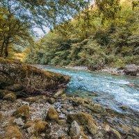 Дорога на озеро Рица. Абхазия :: Лев Квитченко