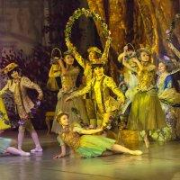 """Сцена из балета """"Спящая Красавица"""" - Вальс цветов :: Владимир Максимов"""