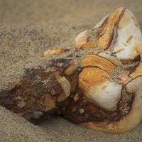 Песок и камень :: Дмитрий Сорокин