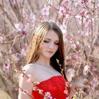 в персиковом саду... :: Марина Брюховецкая