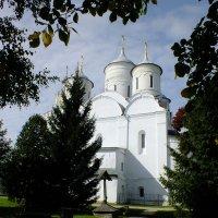 Спасо-Прилуцкий монастырь. Спасо-Преображенский собор :: Николай