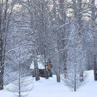 Зимушка-зима :: Борис Гуревич
