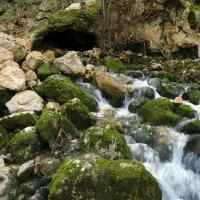 Вот с такого ручейка начинается река :: Михаил Баевский
