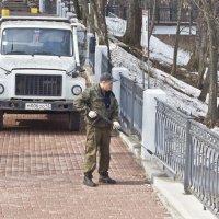Подготовка к празднику. :: Андрей Синицын