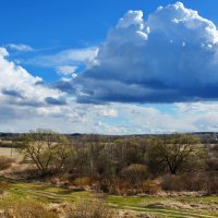 Небо,  поле... :: Валера39 Василевский.
