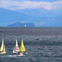 Вид с озера Таупо на гору Руапеху :: Natalya секрет