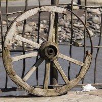 Старое колесо :: Avak. A