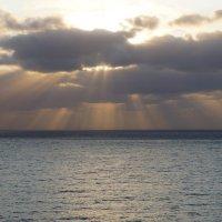 Солнечные лучи :: Natalia Harries
