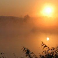 Утро восход солнца и туман :: Владимир
