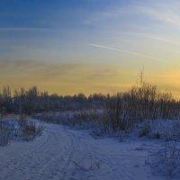 зимний вечер на пустыре(без строений) :: evgeny ryazanov