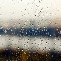 дождь /jupiter-9 f2/85mm :: Pasha Zhidkov
