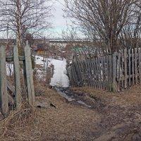 Северодвинск. Весна. Дачная тропа :: Владимир Шибинский