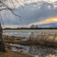 Весна :: Александр Тулупов