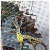 Птички-ножнички :: muh5257