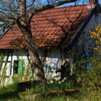 Старый ........ :: Schbrukunow Gennadi