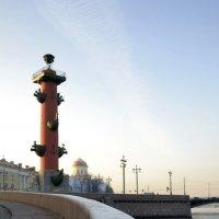 Ростральные колонны, Санкт-Петербург :: Никита Мяу