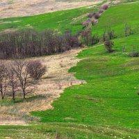 Осень-весна :: Николай Николенко
