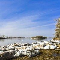 Весна на реке :: юрий Амосов