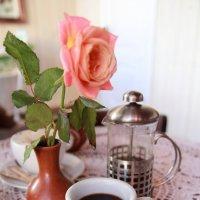 кофе :: аннушка