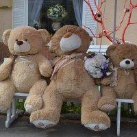 Три медведя :: Raisa Ivanova