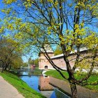 Весна в городе :: Милешкин Владимир Алексеевич