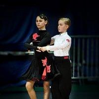В ожидании танца... :: Ирина Шарапова