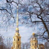 Церковь в Петропавловской крепости :: Михаил Сахнов