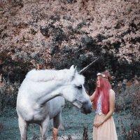 Unicorn :: Варвара Каштанова