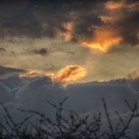 Таганрог. Весь день шёл дождь . Солнце показалось на несколько минут. :: Раскосов Николай