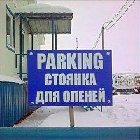 Парковка :: Леонид Сергиенко