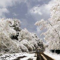 Майский снег :: Анатолий Иргл