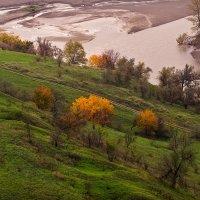 Осень :: Игорь Сикорский