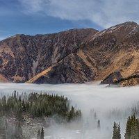 Выше тумана :: Евгений Осадчий