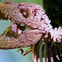 Динозавр в Детском мире :: Дмитрий Сушкин