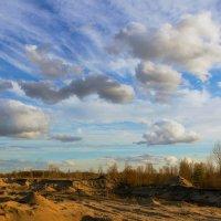 Предзакатные облака.. :: Юрий Стародубцев