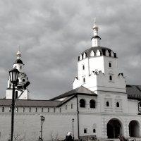 Свияжский монастырь :: Damir Si